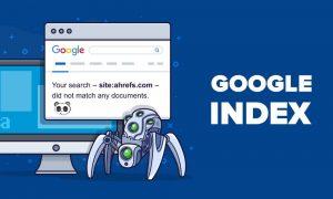 Google không tìm thấy website của bạn